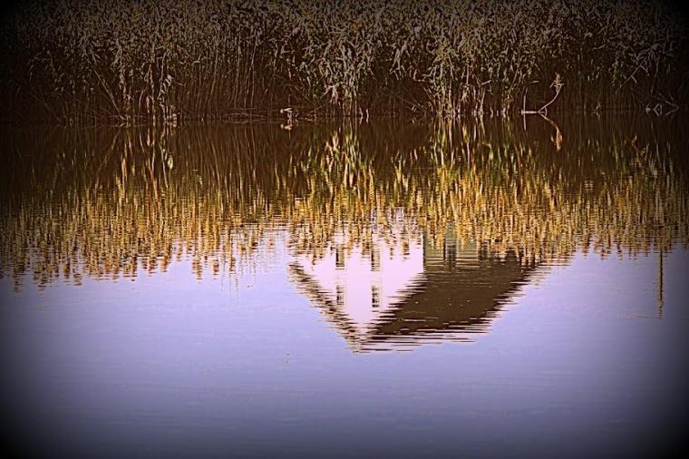 oct-nov 2012 103
