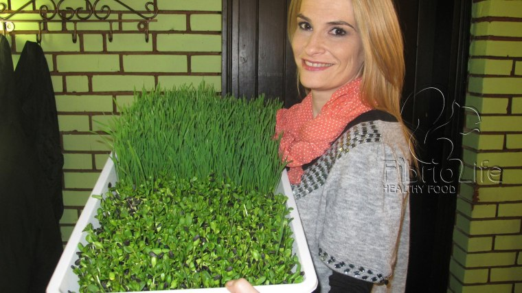 Cornelia, Zana balaie de la restaurantul Fibrio