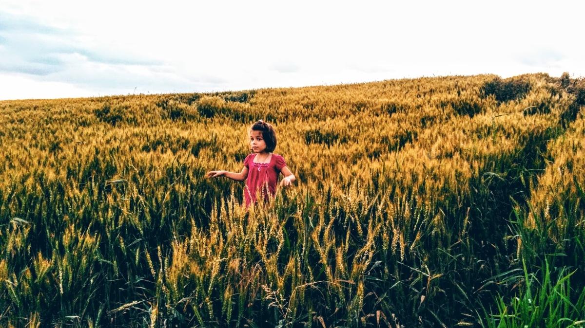 """""""Copilul este unul dintre lucratorii cei mai chinuiti de pe planeta, pentru ca nu mai are timp liber"""". (prof. Florin Colceag)"""