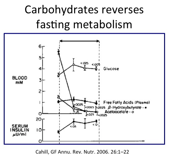 glucose-reverses-fasting